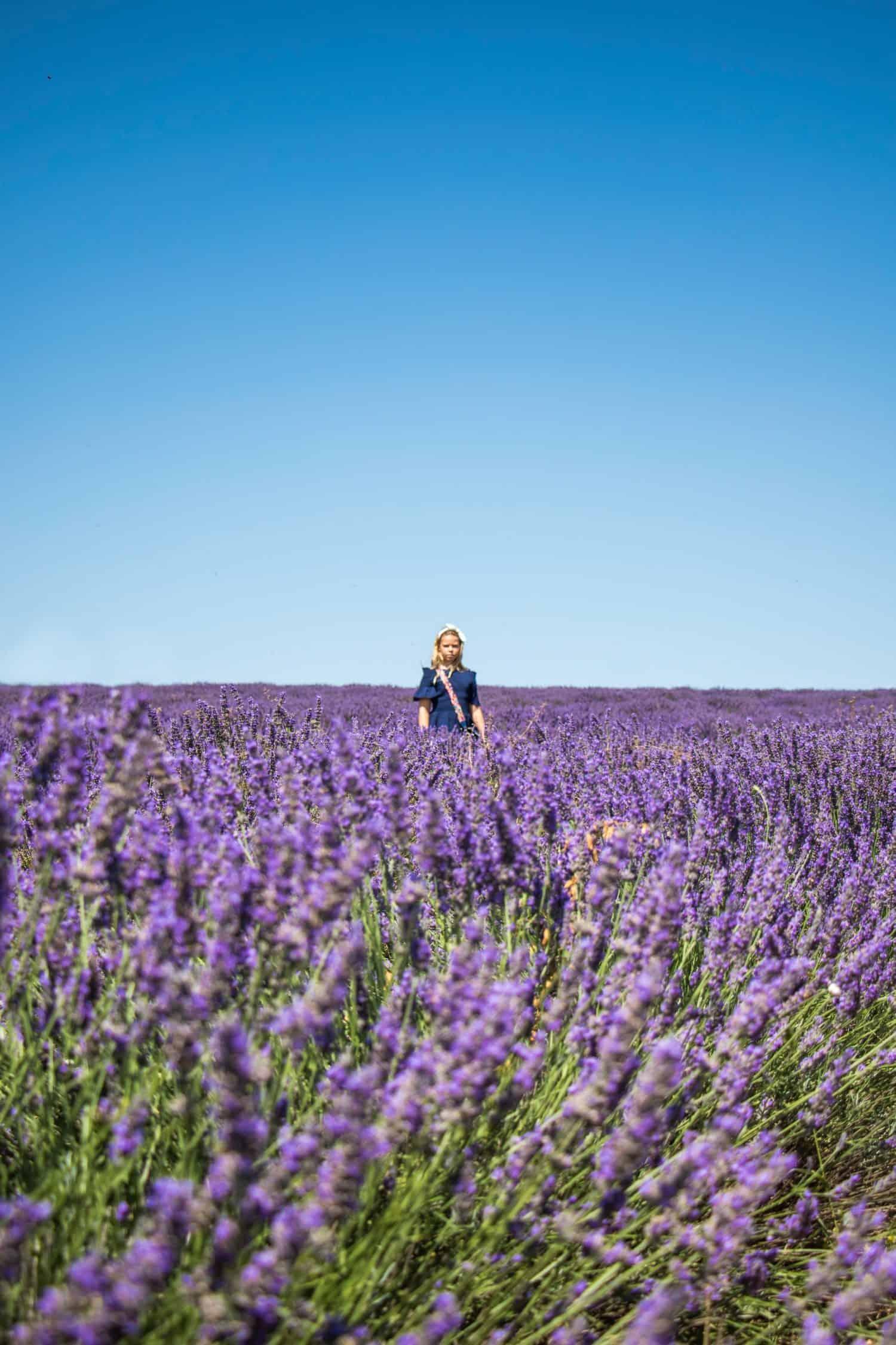 aromatherapy massage oils for Spring - jasmine